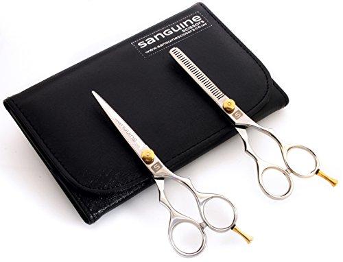 Ensemble Ciseaux de coiffure et ciseaux à effiler, 14 cm, étui de présentation