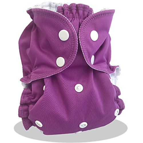 Kit couche lavable ENFANT 14-30kg Fairy Dust APPLECHEEKS