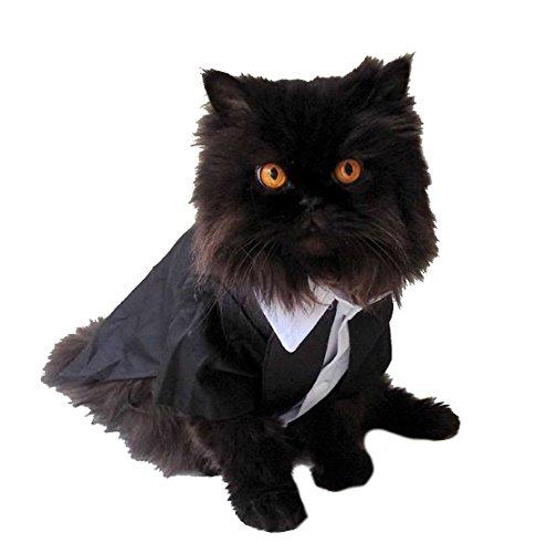 Super mignon noir et blanc Petit Chien Chat Tuxedo Costume Pull fantaisie