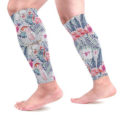 Orquídea Hibisco Flamenco Patrón de loro Mangas de compresión para pantorrillas Shin Férula Soporte Protectores de piernas Alivio del dolor de pantorrillas para Runn