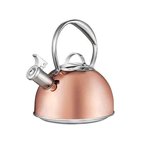 Household products - Hervidor de acero inoxidable de la hervidor de acero inoxidable con la manija de aislamiento Tetera de la placa de gas de inducción segura para todas las estufas Home Camping 2.6L