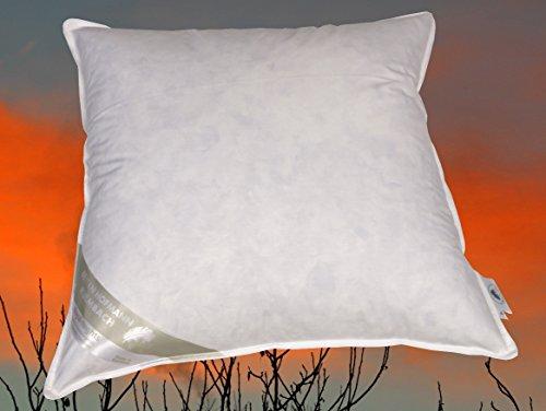 Betten Hofmann France Kissen Kopfkissen Daunenkissen 65x65 cm 100% Daunen flauschig weich (550 g medium)