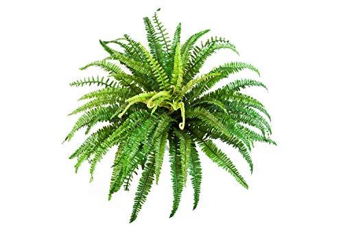 Helecho Artificial Lean con 76 Hojas, Verde, Ø 85cm, 60cm - Planta Textil/decoración - artplants