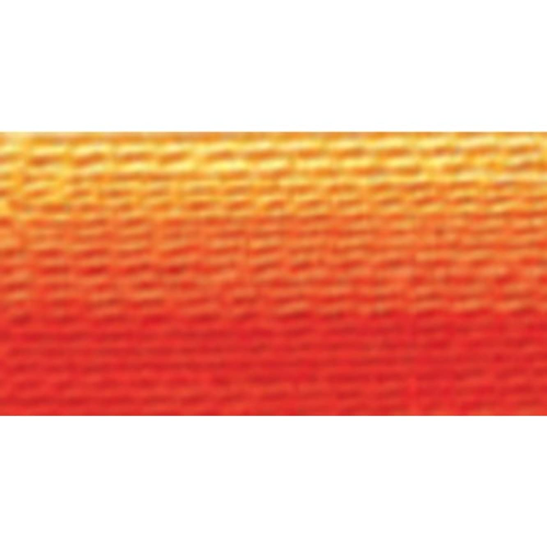 DMC 117-51 Six Stranded Cotton Embroidery Floss, Variegated Burnt Orange, 8.7-Yard