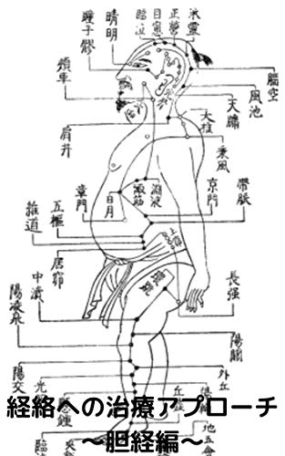 経絡の治療アプローチ~胆経編~ 経絡マッサージ