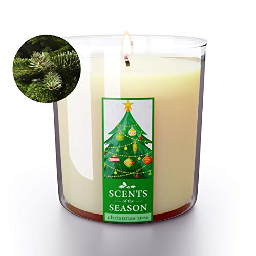 Christmas Scented Candles Fraser Fir Christmas Tree   All-Natural Clean Soy Candle   Highly Scented   Delightful Home Fragrance   Extra Long Burning   12.5 oz Jar   Hand Made in The USA