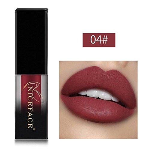 Huihong NICEFACE 18 Schattierungen matte Lippen Dessous flüssige Lippenstift, langlebig und wasserdicht. (Sexy 04)