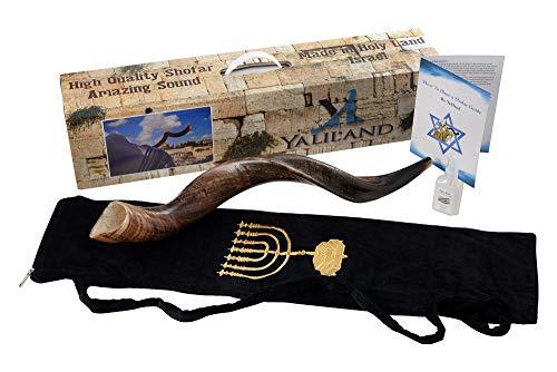 SHOFAR Set FULL Natural Kudu Horn Yemenite + Bag + odor gone + Guide + Carrying Box Case (26'-28')