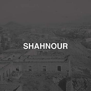 Shahnour