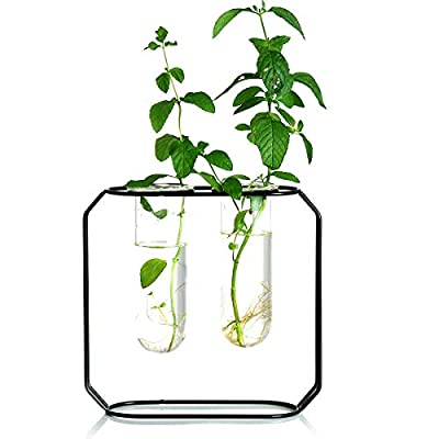 Ivolador Modern Tabletop Metal Frame Test Tube Vase Planter Terrariums Metal Stand with 2 Test Tube Perfect for Propagating Hydroponic Plants Home Garden Wedding Decoration