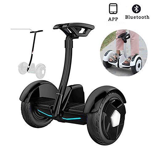 E-Balance Scooter City-Cruiser 10 Zoll Smart Self-Balancing Roller Mit Bluetooth LED Flash Für Kinder Und Jugendliche+ Sicherheitsarmlehne Mit Einstellbarer Länge,Schwarz