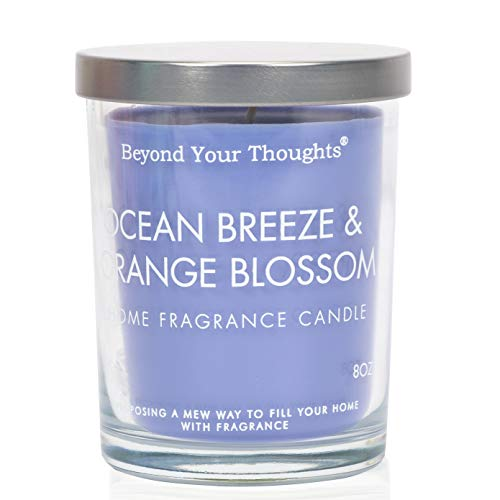 Beyond Your Thoughts Scented Candles Jar Candle Natural Aromatherapy Soy and Paraffin Wax 100% Cotton Wick Mixed Popular Fragrances OceanBreeze&Orange Blossom
