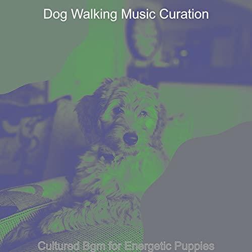 Vintage Music for Afternoon Dog Walks