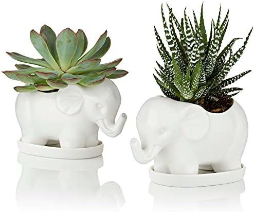 Ceramic elephant planter _image2