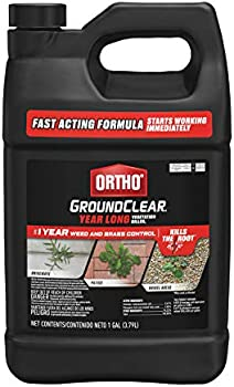 Ortho Ground Clear Weed and Grass Killer, 170-oz