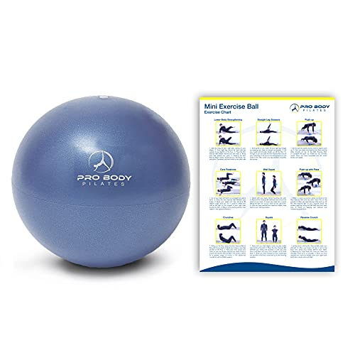 ProBody Pilates Ball Workout Ball - 9 Inch Mini Physical Therapy Ball for Stability, Barre, Yoga, Bender, Balance, Core Training, Recovery Small Exercise Ball for Between Knees (Indigo)