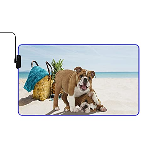 NOLYXICI RGB Gaming Mouse Pad,Large Extended Soft Led Mouse Pad,Beach Funny Time French Bulldog,Non Slip Rubber Base Computer Keyboard Mousepads Mat,for Gaming and Work 23.6x13.9in