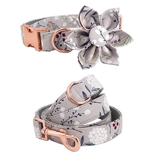 Girl Dog Collar Dog Flower and Leash Set for Pet Dog Cat with Rose Gold Metal Buckle (M)