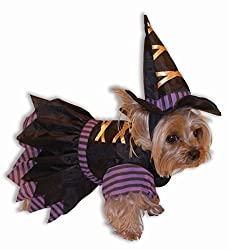 Dog Witch Halloween Costume