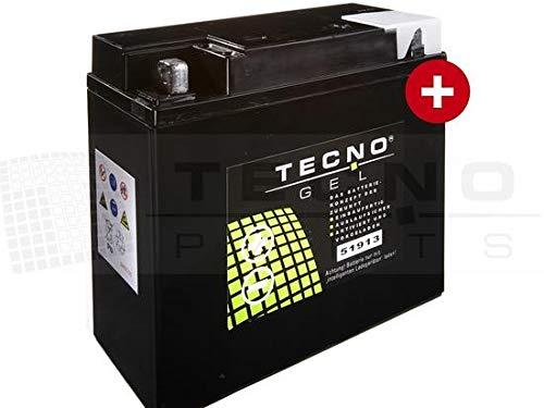 TECNO-GEL Motorrad-Batterie 51913 (51814) für BMW R 1200 C, CL, RT m/o ABS 1997-2014, 12V Gel-Batterie 22AH, 186x82x171 mm inkl. Pfand