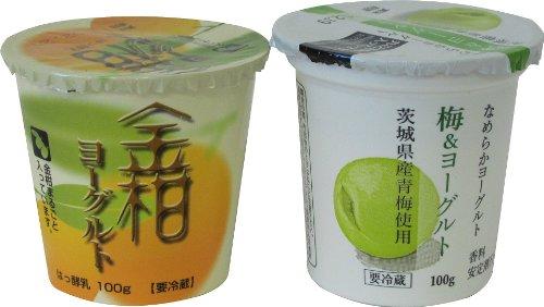ヨーグルト おみたま(小美玉)  金柑(きんかん)、梅 6本セット