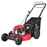 PowerSmart Self Propelled Lawn Mower, 22 inch & 170CC, Gas Powered Lawn Mower with Bag, 4-Stroke Engine, 3-in-1 Gas Mower, 5 Adjustable Cutting Heights (1.18''-3.0'' )