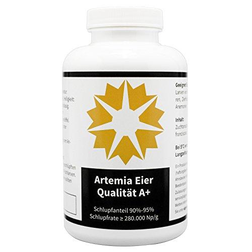 algova Oeufs d'Artemia A+ qualité jusqu'à 95% de taux d'éclosion Nourriture Vivante pour l'élevage de crevettes, cichlidés, Axolotl, Guppy, Poissons (500g)