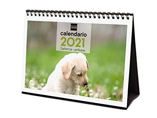 Finocam - Calendario de sobremesa 2021 Escribir Imágenes Cachorros Español