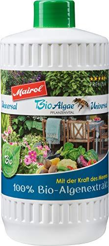 Mairol BioAlgae 100% Bio Algenextrakt Pflanzenstärkung, universal für alle Grün- und Blühpflanzen, 1 Liter mit Messbecher