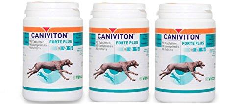 Vetoquinol CANIVITON FORTE Plus 3 x 90 Tabletten (270 Tabletten) - Ergänzungsfuttermittel für Hunde zur Unterstützung der natürlichen Gelenkfunktion
