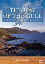 The Way of the Gull anglais