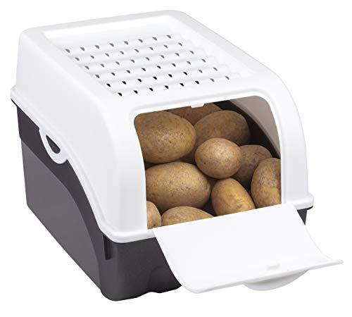 Rival Kartoffel-und Gemüsebox, Kunststoff, UT anthrazit (14), DE weiß (05), 24 x 24 x 2,5 cm