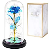 FLORECORD Beauty and The Beast Rose Gift Enchanted Colorful Led Flower Galaxy Rose Light in Glass Dome, Unique Crystal Gifts for Christmas, Valentine's Day, Mother's Day, Anniversary, Girl's Birthday