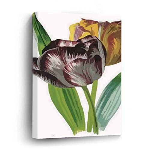 Tulips with Variegated Petals Vector Canvas Picture Painting Artwork Wall Art Poto Framed Canvas Prints for Bedroom Living Room Home Decoration, Ready to Hanging 16'x16'