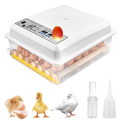 Huevos bIncubadora 36 huevos Digita Mini Automatie Incubadoras Incubadoras para incubar huevos con volteador automático para incubar pavo pato ganso huevos de gallina
