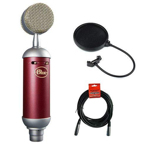 Blue Spark SL Large-Diaphragm Studio Condenser Microphone with XLR Cable and Pop Filter Bundle