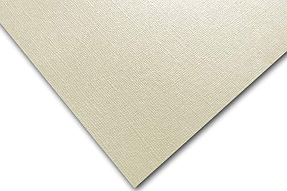 Premium Pearlized Metallic Textured Dove Ivory Card Stock 20 Sheets - Matches Martha Stewart Dove - Great for Scrapbooking, Crafts, Flat Cards, DIY Projects, Etc. (8.5 x 11)