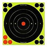 Birchwood Casey Shoot-N-C 8'' Bull's-Eye Target - 30 Targets, Multi, one Size