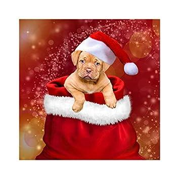 2019 Divine Christmas 2019 Music Compilation