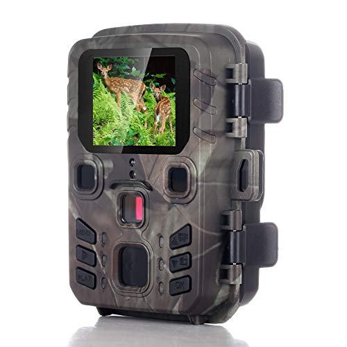 Escape Park Wildkamera mit Bewegungsmelder Nachtsicht, 12MP 1080P BewegungsmelderJagdkamera Überwachungskamera mit 2.4 LCD Display