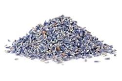 OliveNation Culinary Lavender 2 oz.