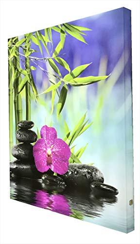 CCRETROILUMINADOS Orquídeas con Piedras Cuadro Decorativo Iluminado, Metacrilato, Multicolor, 80 X 60 X 5.3 Cm