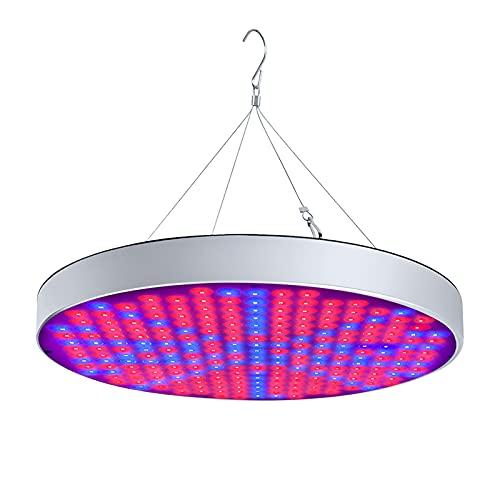 UISEBRT 50W Pflanzenlampe Pflanzenleuchte LED Vollspektrum - Grow Lampe Wachstumslampe 250 LEDs Rot&Blau für Zimmerpflanzen Blumen und Gemüse tageslicht (50W)