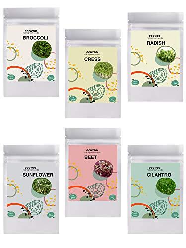 Microgreen Mix Seeds - Organic Microgreen Seeds Salad Mix - Non GMO Microgreen Seeds, Sunflower, Cilantro, Radish, Beet, Cress, Broccoli - Microgreen Organic Seeds - Microgreen Seeds for Sprouting
