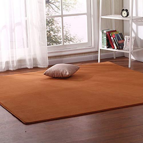 JJSDT Tapijt Dik koraal tapijt woonkamer salontafel deken slaapkamer nachtkastje mat kamer bed voorzijde tapijt Outdoor tent bodemkussen