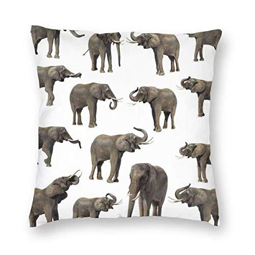 Fundas de almohada de grupo de elefantes orejas de colmillo gran vida salvaje selva mamíferos decoración decoración funda de cojín decoración del hogar sofá almohada decorativa 45,7 x 45,7 cm