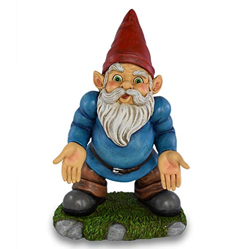 UpBlend Outdoors Funny Gnomes Statue - Norm The Gnome Miniature for Indoor/Outdoor Decoration, 9.75 inches Tall, he has Some Serious Questions (Home Décor)