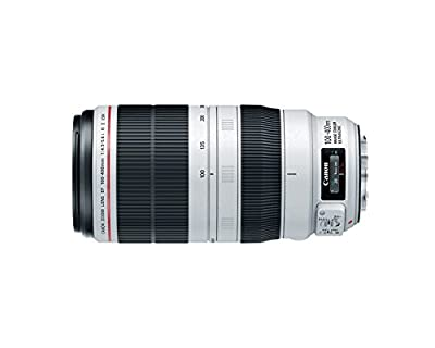 Canon EF 100-400mm f/4.5-5.6L is II USM Lens from Canon