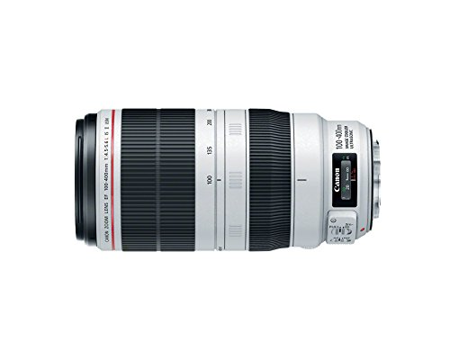Canon EF 100-400mm f/4.5-5.6L IS II USM Lens, Lens Only