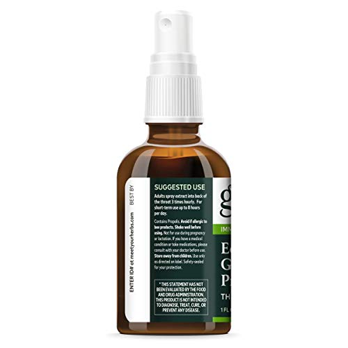 Gaia Herbs, Echinacea Goldenseal Propolis Throat Spray, Herbal Supplement Supports Healthy Immune Response 1-Ounce (Pack of 2)